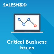 SH_Critical Business Issues